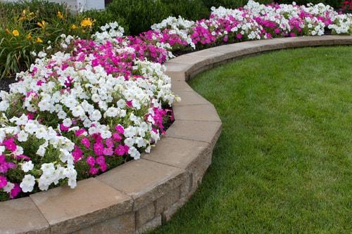Flower Bed Planting Services Medford OR
